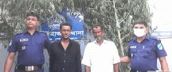 নারায়ণগঞ্জে গাঁজা গাছসহ আটক দুই ভাই
